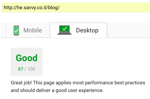 savvy-speed-results-pagespeed