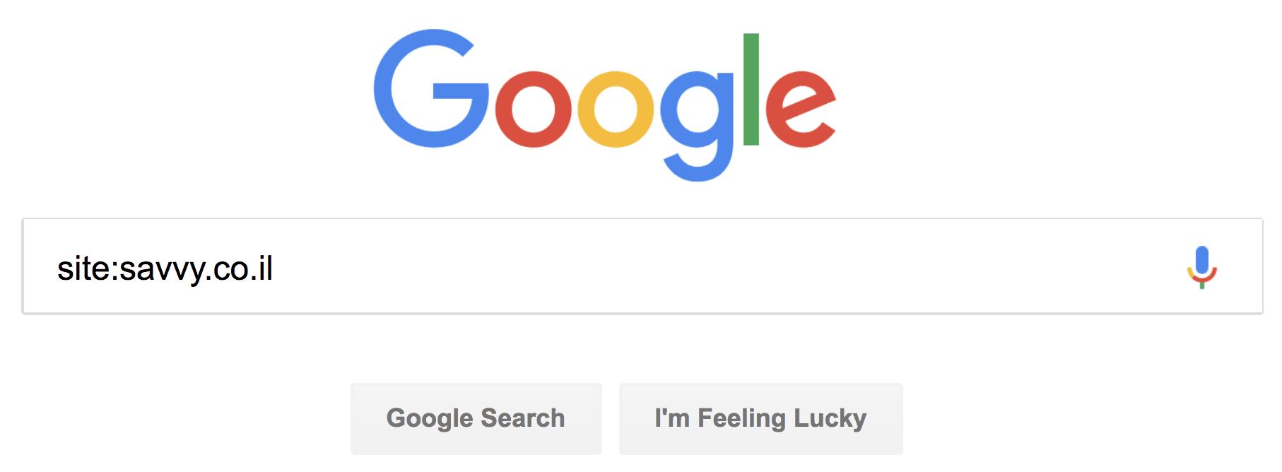 קידום אתרים בגוגל - Site Search
