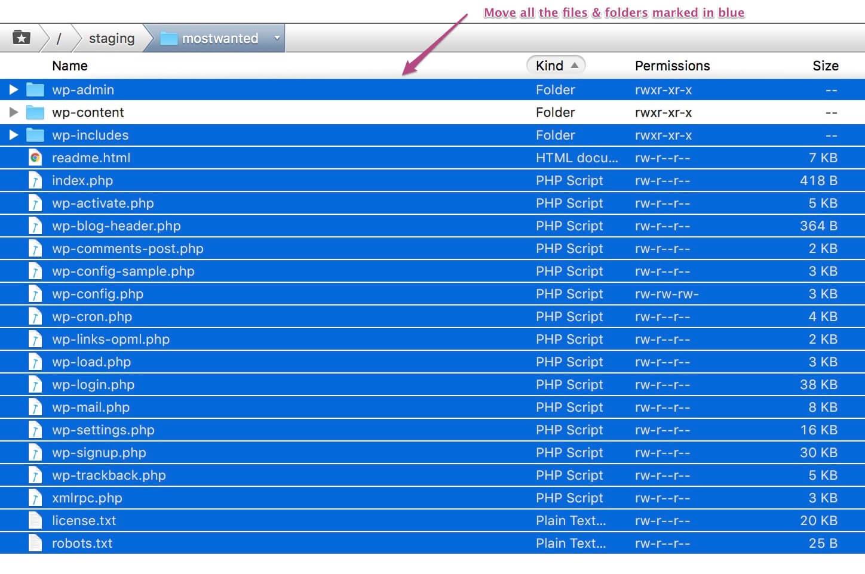 העברת הקבצים מהגירסה הקודמת של וורדפרס לשרת באמצעות FTP