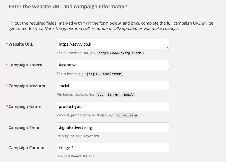 Use Google's Campaign URL Builder to input each parameter individually