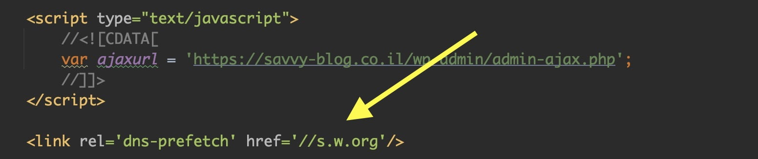 הסרה של DNS prefetch הנטען אוטומטית בוורדפרס
